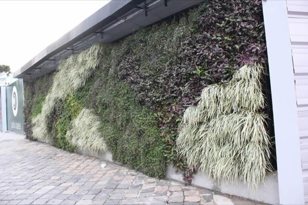 jardim vertical no muro : jardim vertical no muro:Muros de Casas Modernas – Encontre Fotos e Lindos Modelos