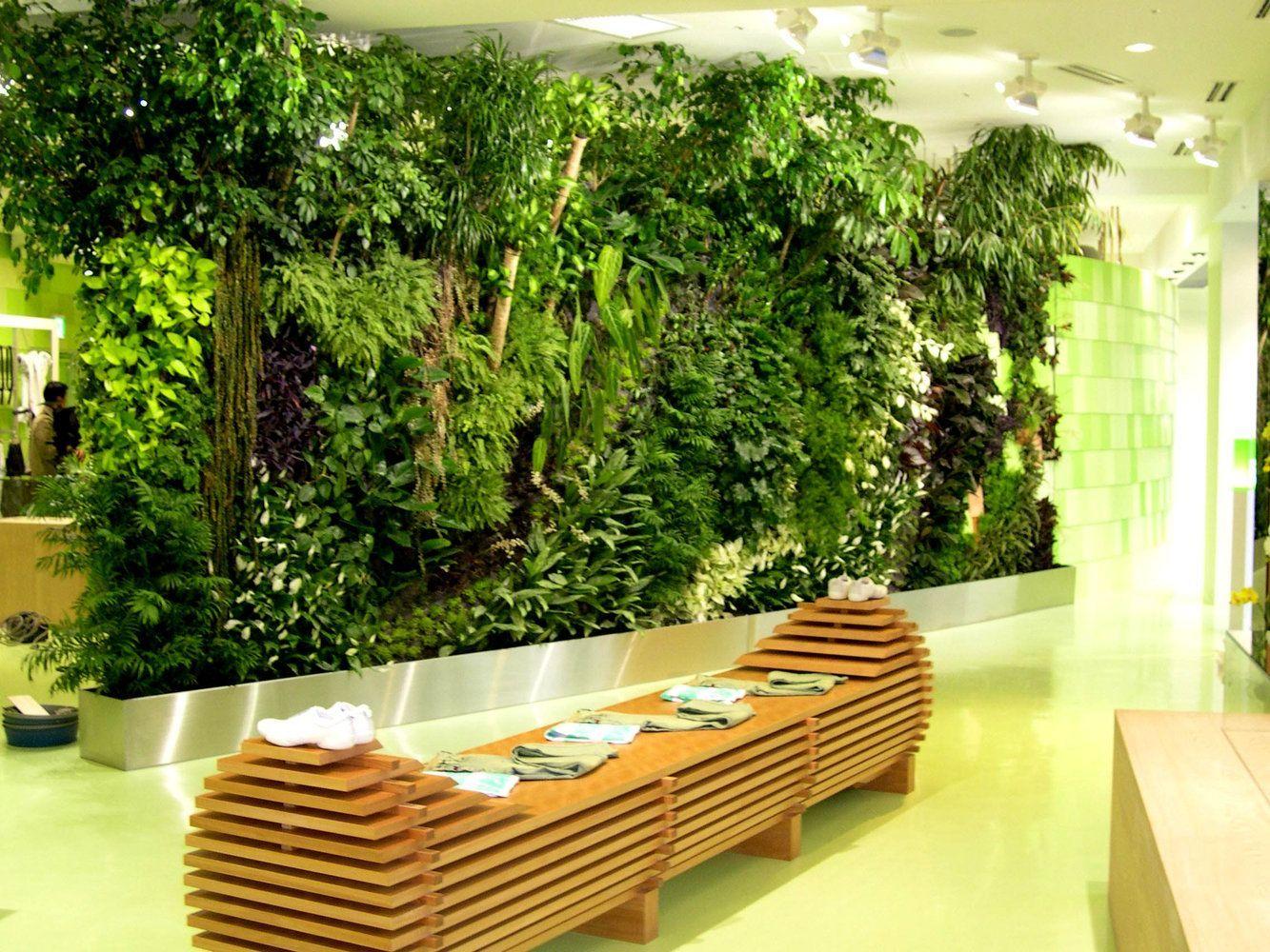 Fotos de Jardins Verticais – Inspirese