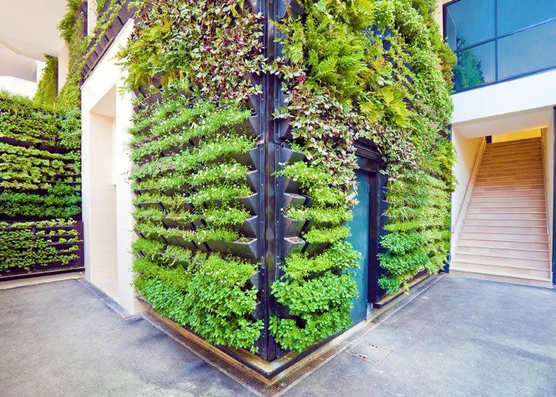 imagens jardins verticais:Fotos de Jardins Verticais – Inspire-se
