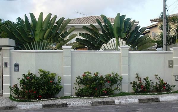 Muros Largos Clean com Flores