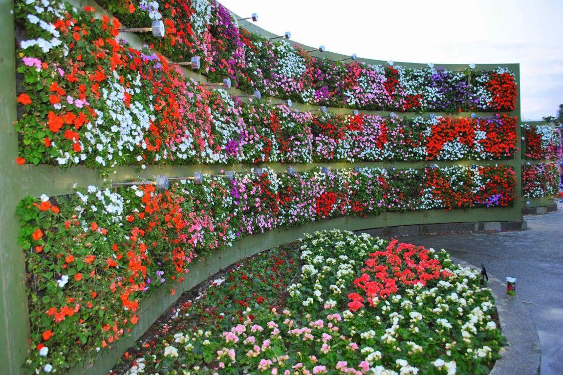 Como fazer jardim vertical passo a passo dicas e fotos - Material para jardin vertical ...